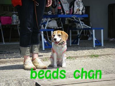 beads chan2