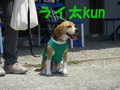 らい太kun2