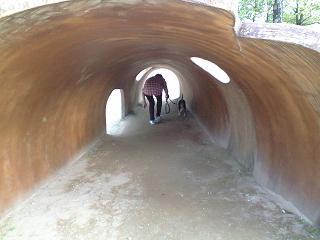 トンネル入ってみました