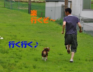 tomoと走る