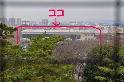 2010121107.jpg