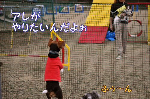 2011010703.jpg