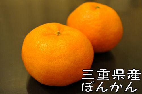 2011011402.jpg
