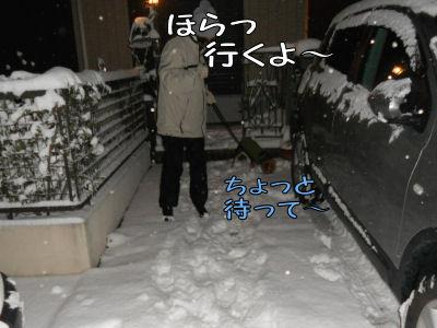 2011011602.jpg