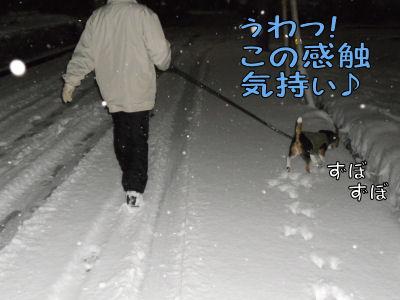 2011011603.jpg