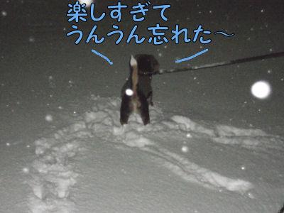 2011011607.jpg