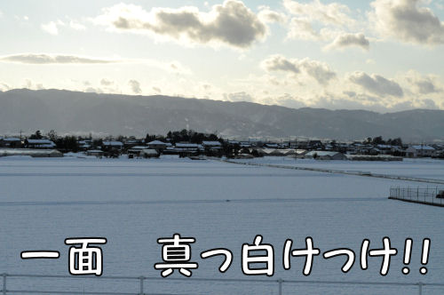2011011803.jpg