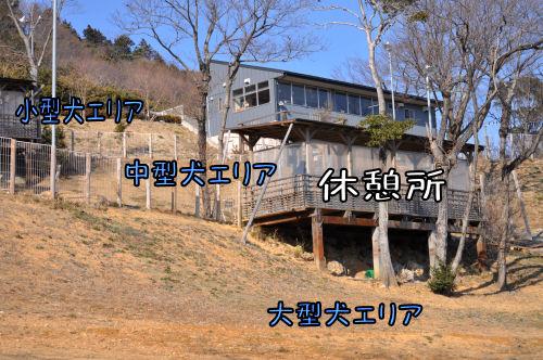 2011022003.jpg