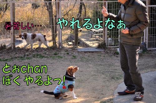 2011022101.jpg