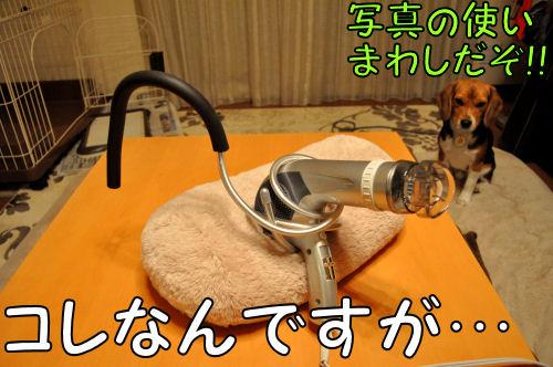 2011031001.jpg
