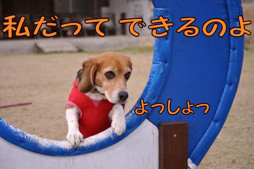 2011032207.jpg