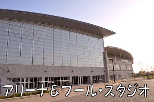 2011041216.jpg