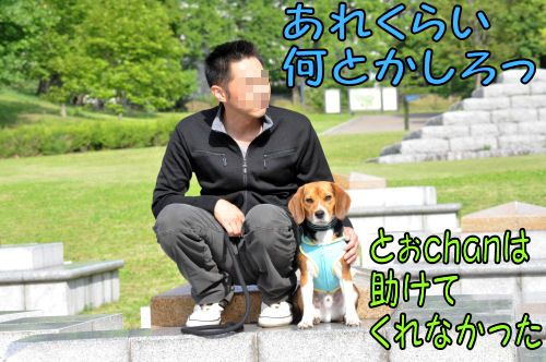 20110524181.jpg