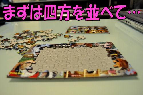 2011090601.jpg