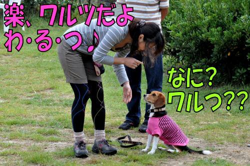 2011092701.jpg