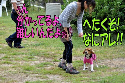 2011092705.jpg