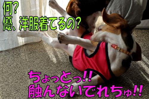 2011101401.jpg