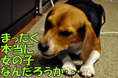 2011110705.jpg
