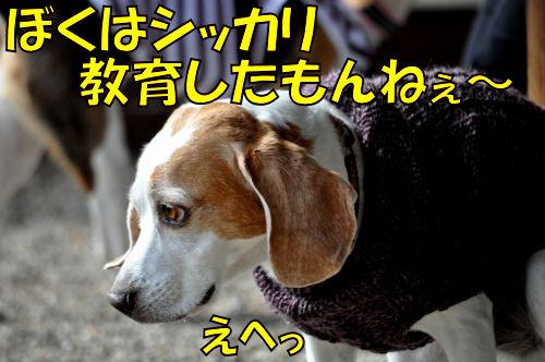 2011110804.jpg