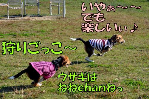 2011111005.jpg