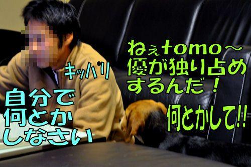 2011122504-1.jpg