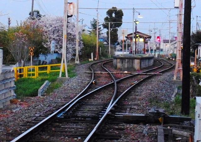 秩父鉄道11.05 (2)