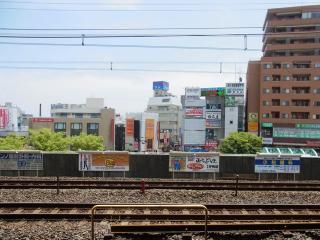 東京都葛飾区2011.06(1)