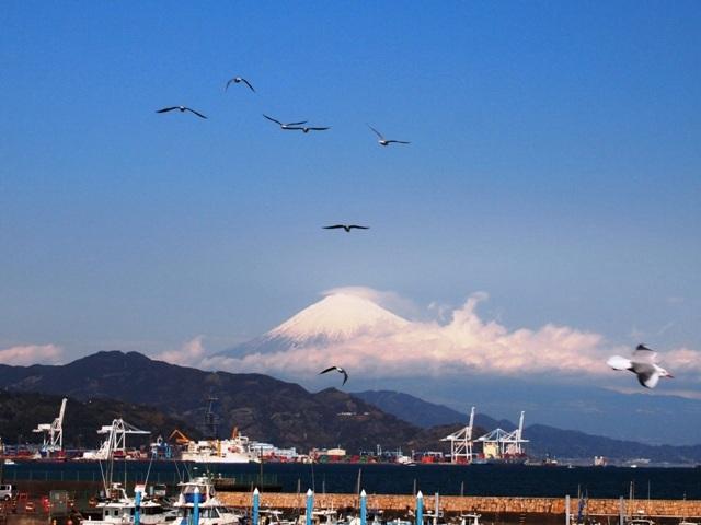 清水港  (3)