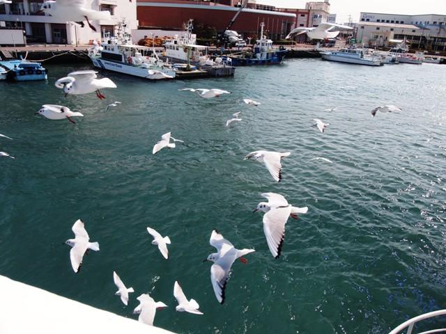 清水港  (1)