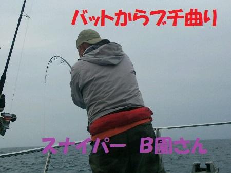 DSC_0396 (450x338)