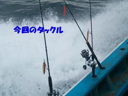 DSC_0481 (450x338)