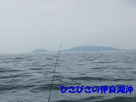 DSC_0483 (450x338)
