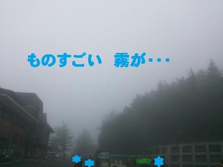 DSC_0504 (450x338)