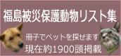 bunner120105-2.jpg