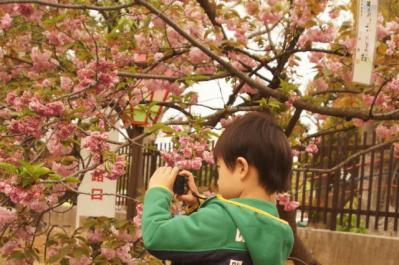 あ37カメラ小僧