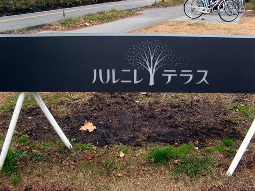 20141118-1.jpg