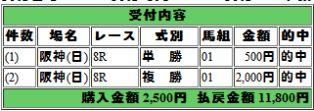 20110609阪神8R 1