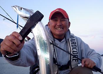 太刀魚さんです