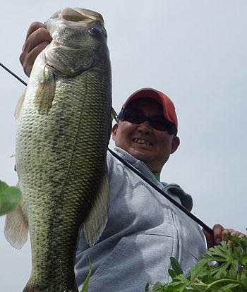今日の最大魚