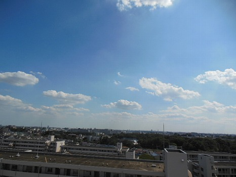 台風一過のヒツジ雲