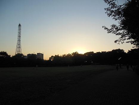夕暮れ、中央公園