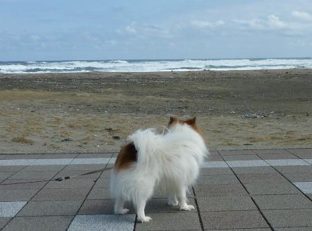 ♪海はよ~ってか!