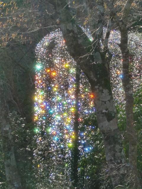 箱根ガラスの森美術館 フォンターナ