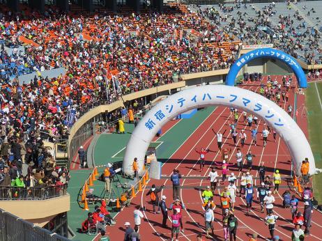 新宿シティハーフマラソン2013