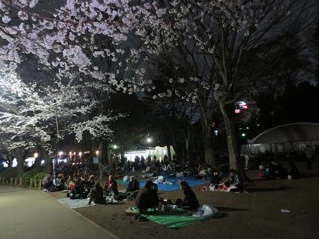 井の頭公園0324-夜