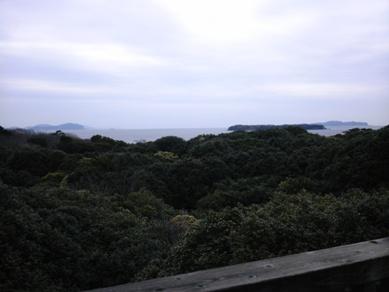 萩・椿祭り (22)