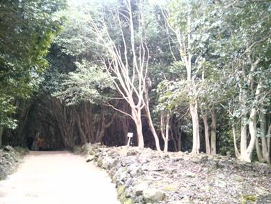 萩・椿祭り (16)