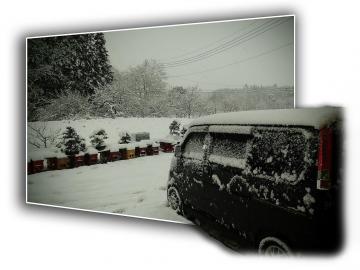 大雪-(1)