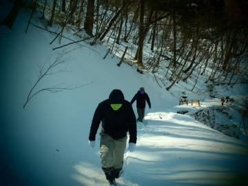 渓流散歩 満腹の旅 (4)