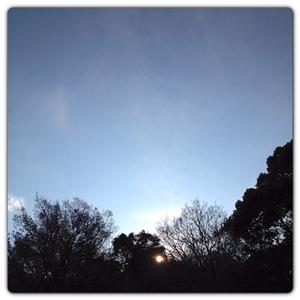 20121227-0007.jpg